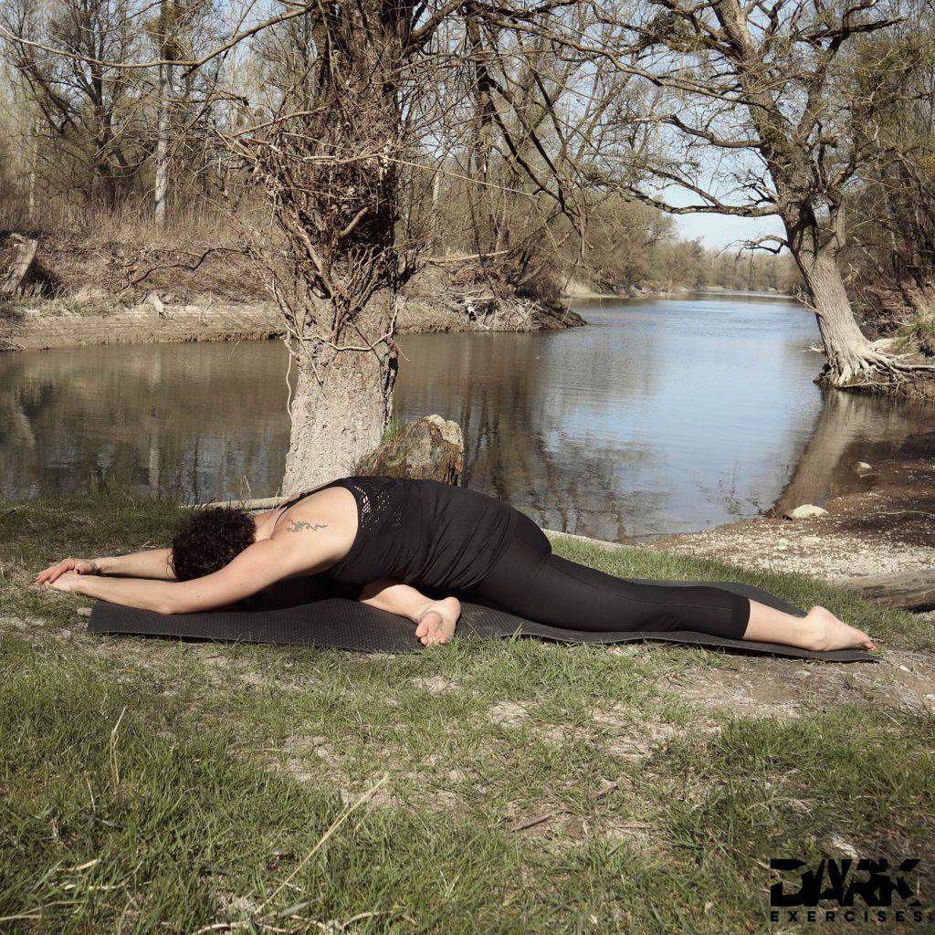 Yin Yoga mit Insomnium - Schwan