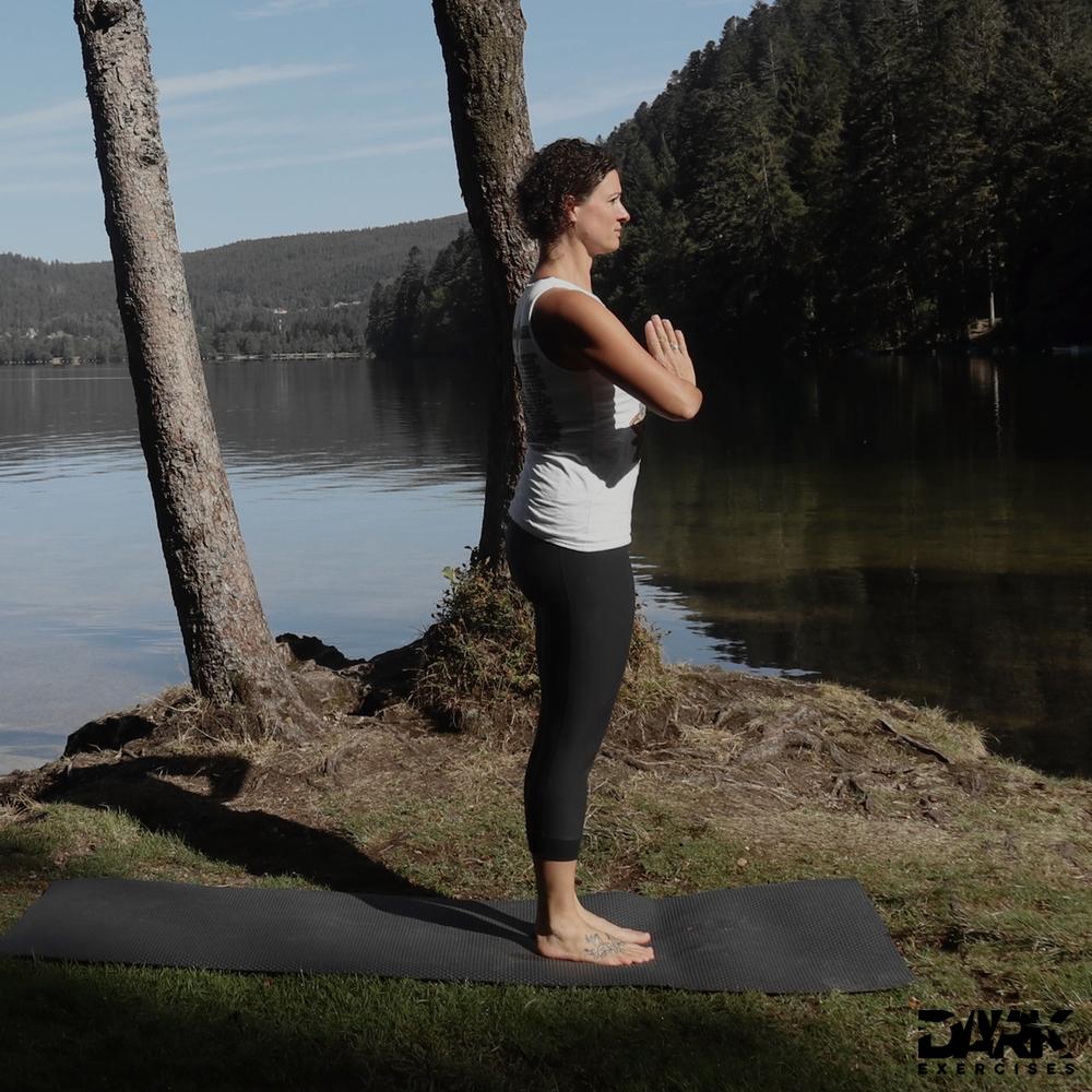 Taival-Yoga Samasthiti