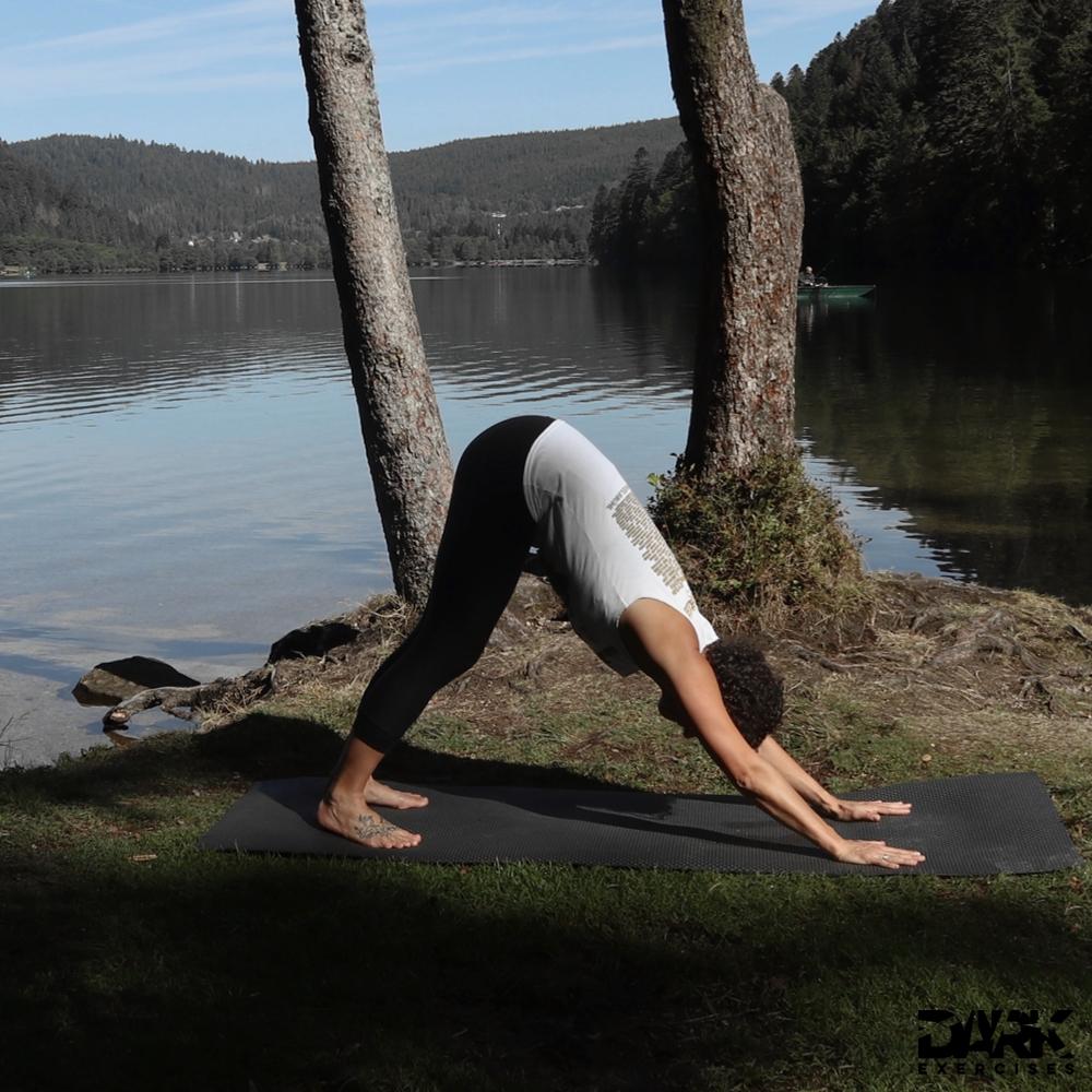 Taival-Yoga herabschauender Hund Aho Mukja Svanasana