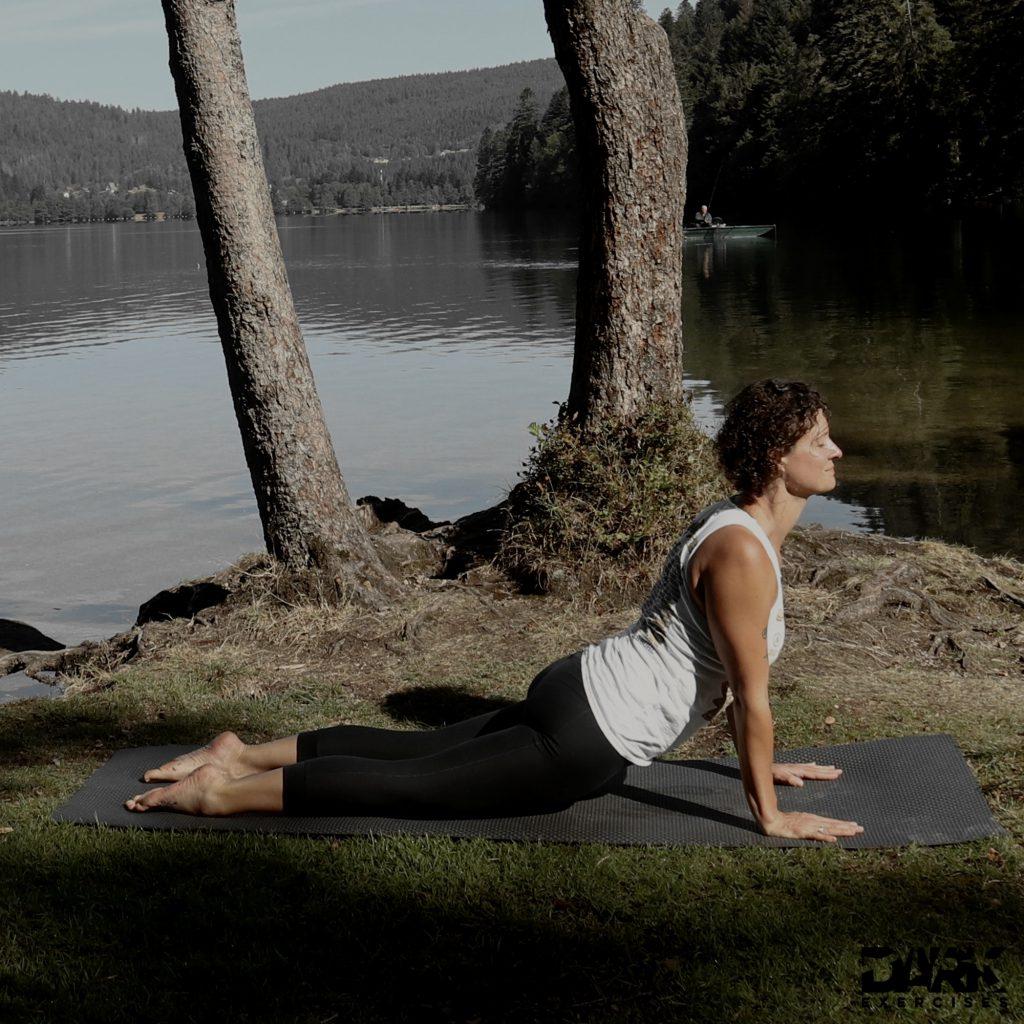 Taival-Yoga Urdhva Mukha Svanasana