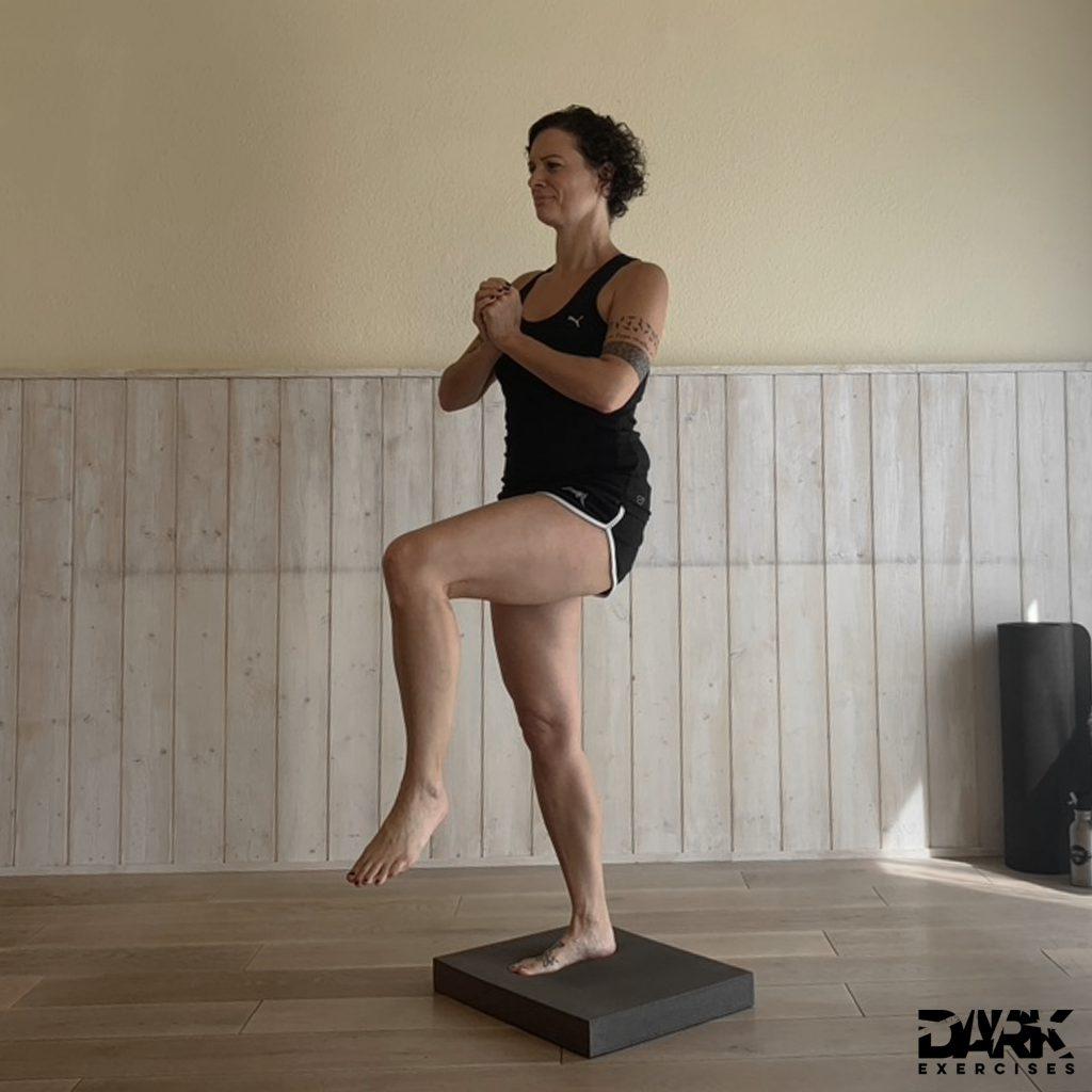 Balance-Pad EXERCISES _ Einbeinstand Knie angehoben