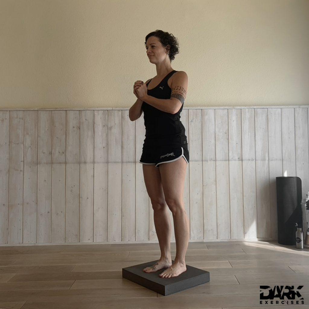 Balance-Pad EXERCISES - Einbeinstand Ausgangsposition